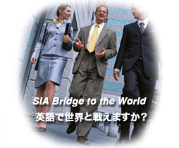SIA Bridge to the World